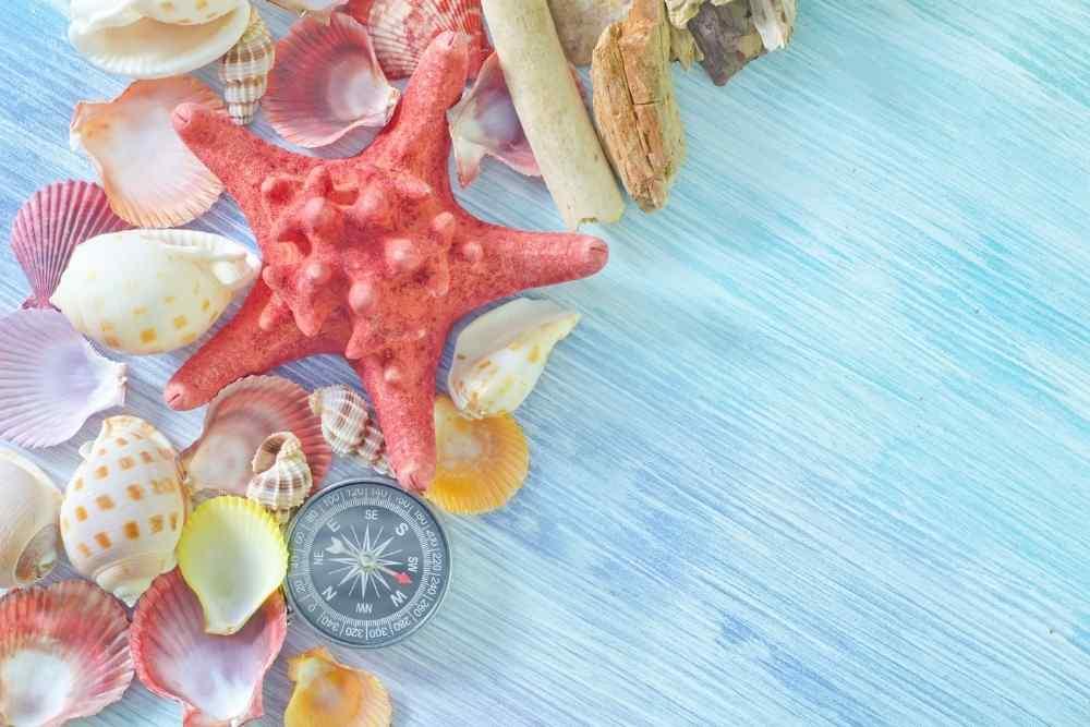 Bonus Vacanze 2021- Praia a Mare 1